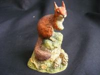 B036 Border Fine Arts - 1996/1997 SR7 - Red Squirrel