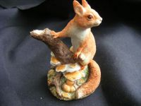 B1543 Border Fine Arts - 2014/2015 Secret Store - Squirrel 26th Society Members piece